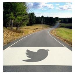 Setting Twitter Goals