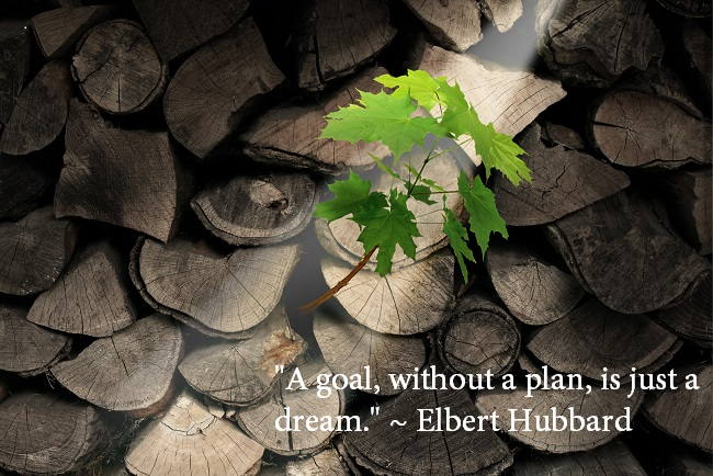"""A goal, without a plan, is just a dream."" ~ Elbert Hubbard"