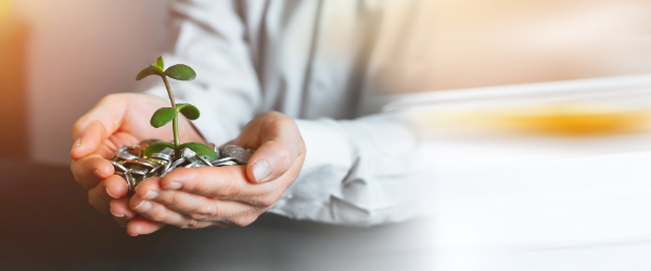 hands holding coins with plant growing out of them